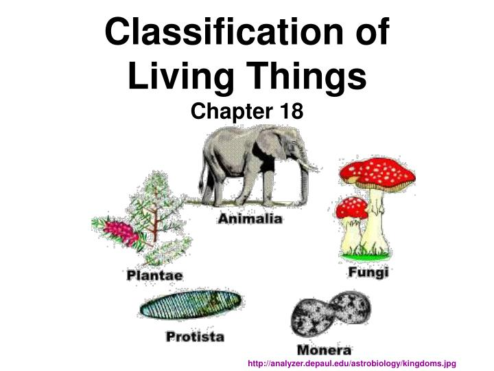 classification of living things chapter 18 n.
