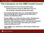 the literature on the sme credit crunch
