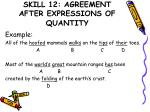 skill 12 agreement after expressions of quantity