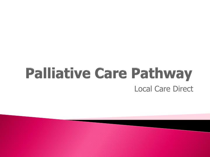 palliative care pathway n.