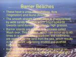 barrier beaches