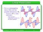 linear polarization1