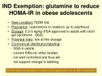 ind exemption glutamine to reduce homa ir in obese adolescents