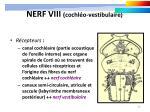 nerf viii cochl o vestibulaire