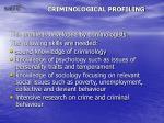 criminological profiling