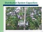 distribution system capacitors