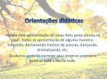 orienta es did ticas2