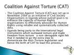 coalition against torture cat
