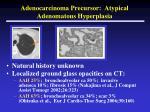 adenocarcinoma precursor atypical adenomatous hyperplasia