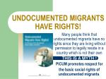 undocumented migrants have rights