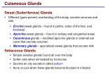 cutaneous glands