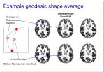example geodesic shape average