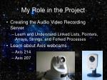 my role in the project