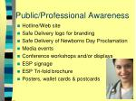 public professional awareness