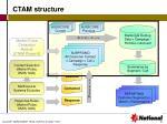 ctam structure