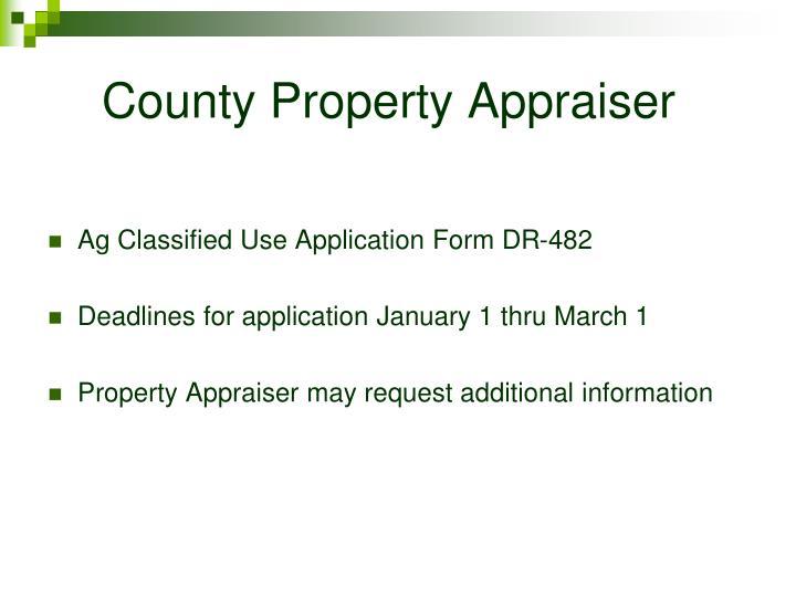 County Property Appraiser