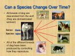 can a species change over time