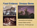 fossil evidence dinosaur bones
