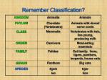 remember classification