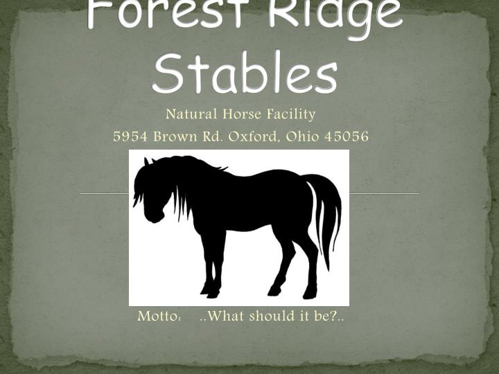 forest ridge stables