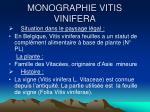 monographie vitis vinifera
