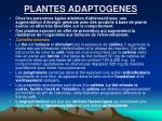 plantes adaptogenes