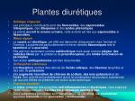 plantes diur tiques1