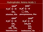hydrophobic amino acids 1