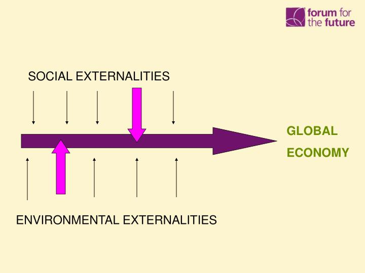 SOCIAL EXTERNALITIES