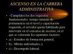 ascenso en la carrera administrativa4