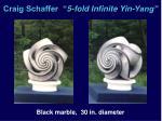 craig schaffer 5 fold infinite yin yang