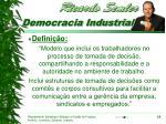 democracia industrial