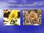 alergenos de artr podos1