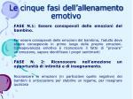 le cinque fasi dell allenamento emotivo