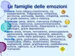 le famiglie delle emozioni