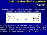 acidi carbossilici e derivati ammidi3