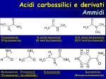 acidi carbossilici e derivati ammidi6