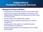 independence prohibited nonaudit services