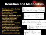 reaction and mechanism1