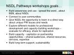 nsdl pathways workshops goals