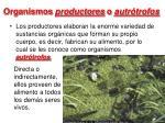 organismos productores o autr trofos