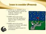 issues to consider process