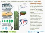biomass a very important component of res policy targets but