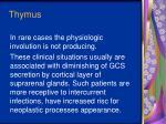thymus4