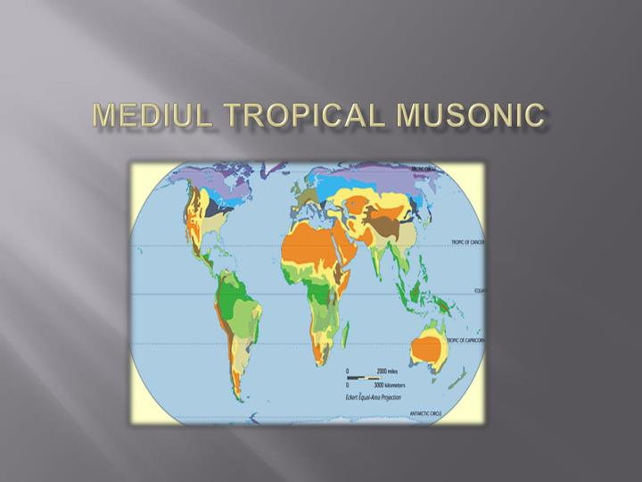 mediul tropical musonic n.