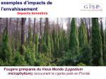 exemples d impacts de l envahissement