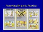 promoting hygienic practices