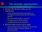 the strategic opportunities
