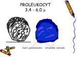 proleukocyt 3 4 6 0