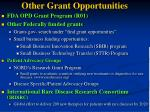 other grant opportunities